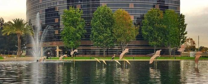 Birds In Flight by Tom Van Sant