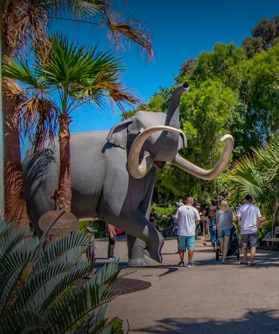 World-Famous San Diego Zoo